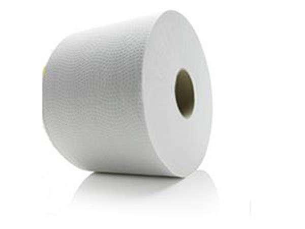 Satino Premium Toiletpapier.Online Toiletpapier Satino Premium Compactrol 2 Laags 100mtr